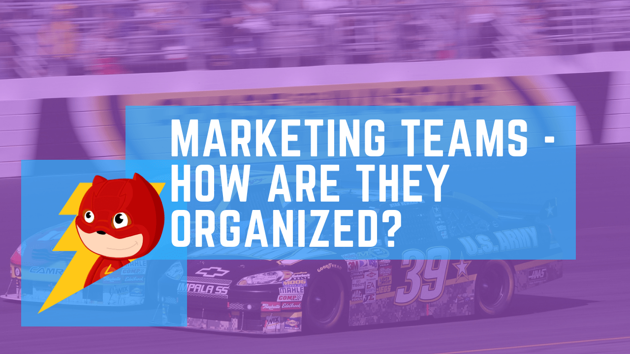 marketing team structure study made with various companies