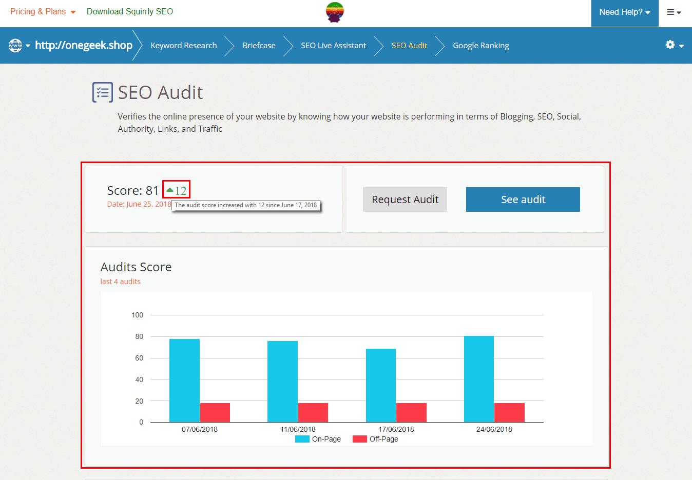 site audit score